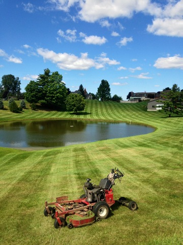 Lawn Services, lawn mower with beautiful grass