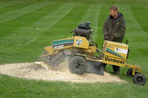 Landscape Maintenance Services by Jack's Lawn & Snowplowing, Inc.