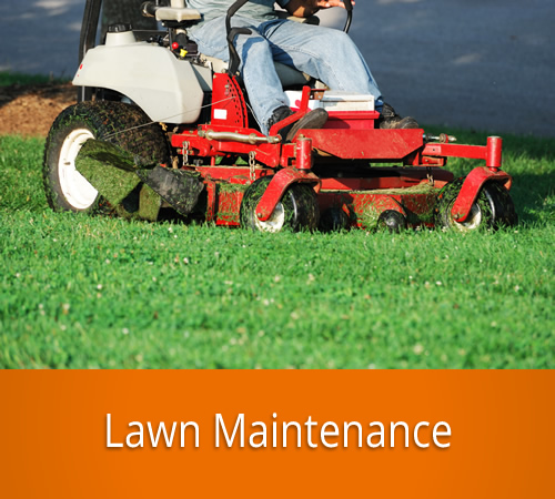 Lawn Maintenance by Jack's Lawn & Snowplowing, Inc.