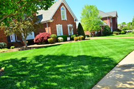beautiful lawn in front of home