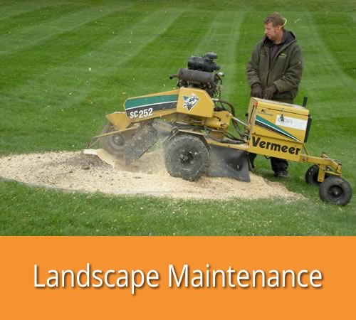 Landscape Maintenance by Jack's Lawn & Snowplowing, Inc.